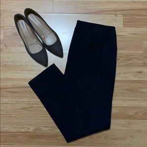 Ann Taylor Zipper Ankle Stretch Dress Pants